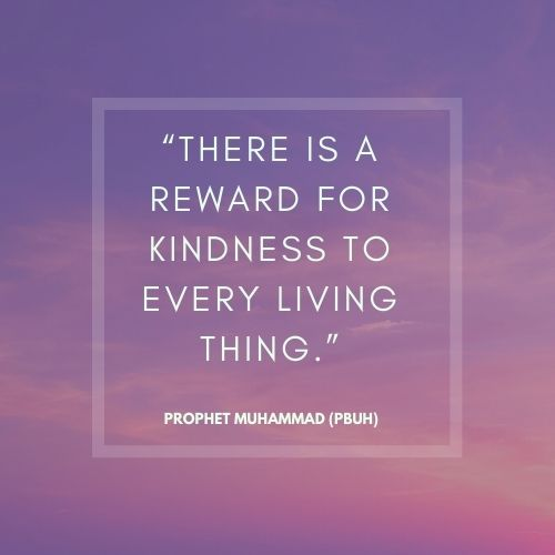 Prophet Muhammad words on Kindness